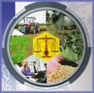 Oportunidades Comerciales Sector Agrario